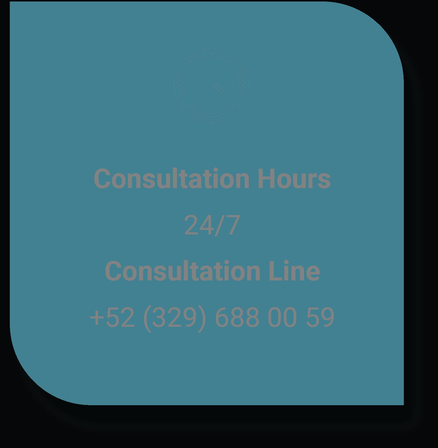 Consultation Hours