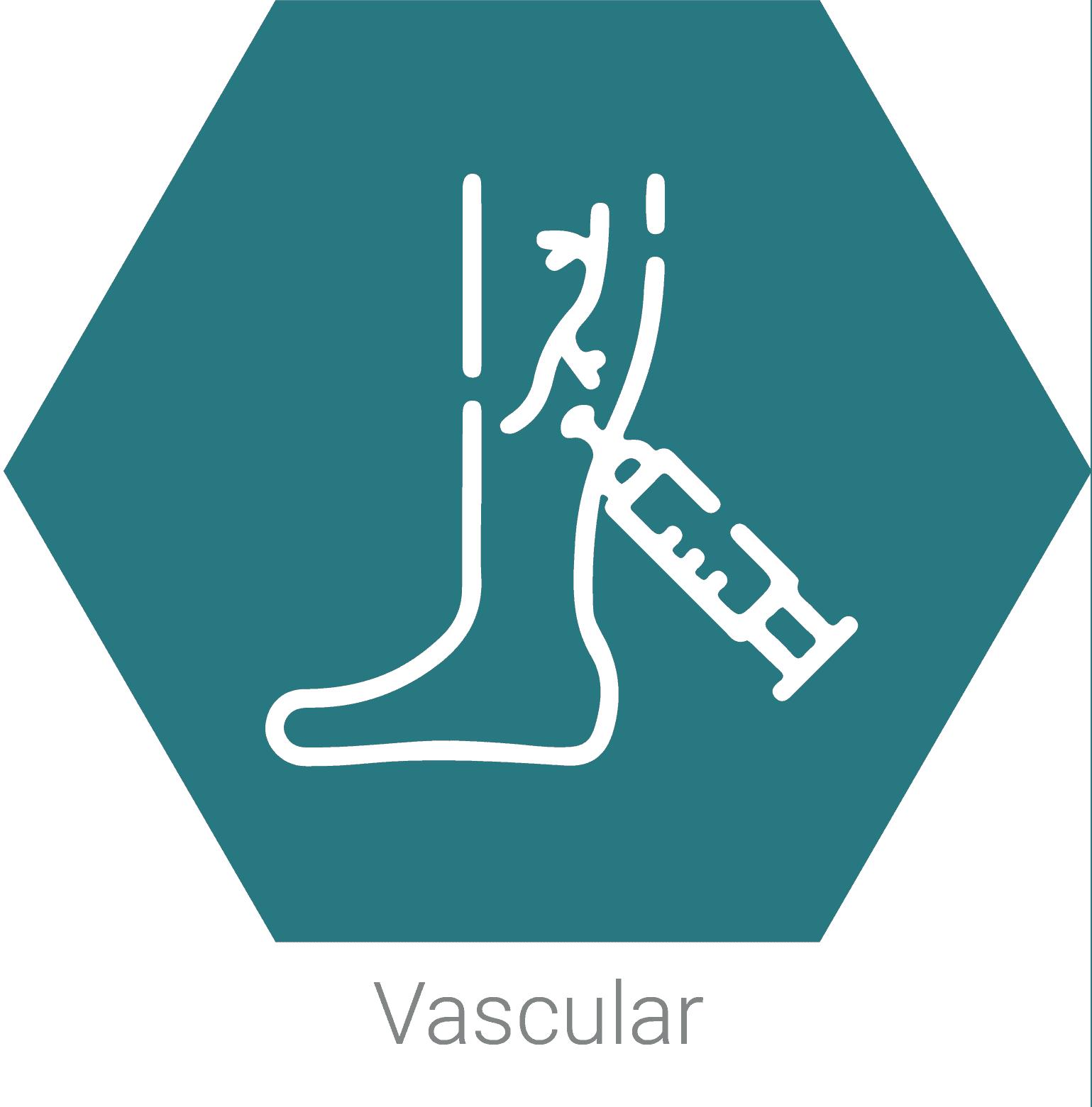 Vascular_1